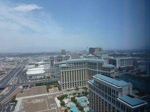 A view from our suite
