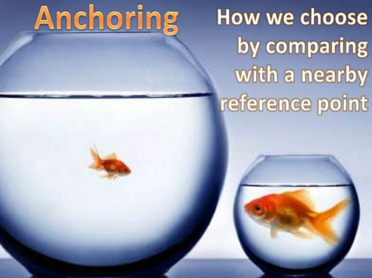 photo of goldfish to illustrate anchoring concept in psychology