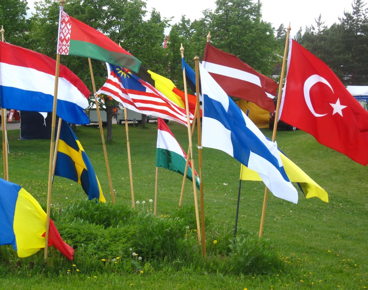photo of different country flags stuck in the ground on poles
