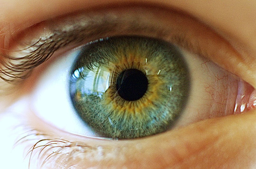 closeup photo of a human eye