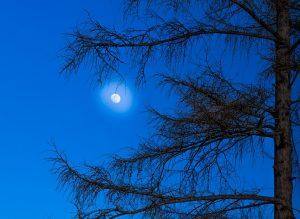 moon-1275694_960_720