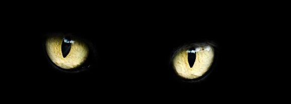 The Scientific Power of Superstition