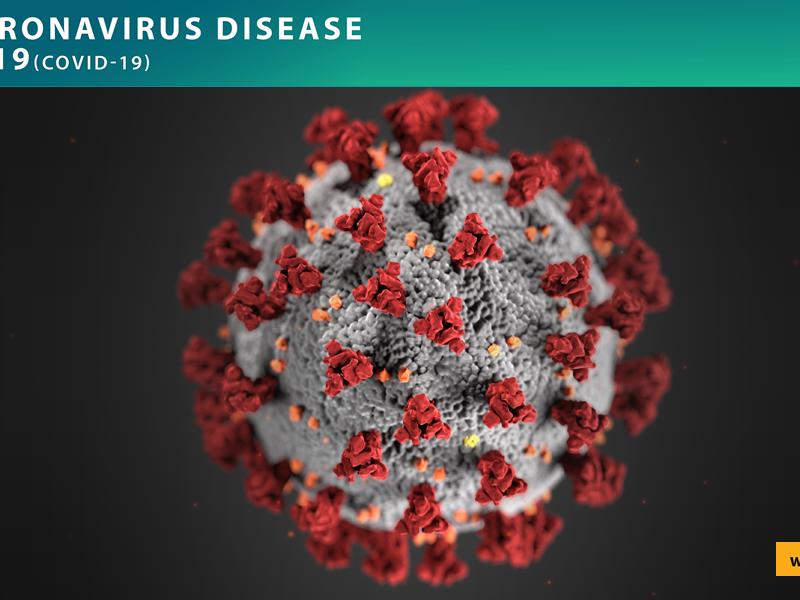 SPECIAL: Coronavirus/COVID-19 Fact Sheet
